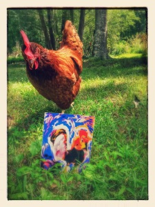 You can also meet our inquisitive chickens!